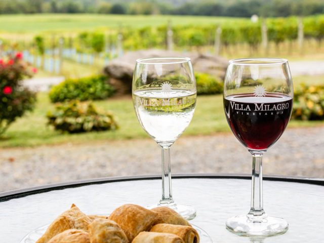 vineyard glass of white and red wine on a table with a plate of food overlooking the vineyard villa milagro vineyards phillipsburg new jersey united states ulocal local products local purchase local produce locavore tourist