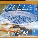 autocueillette logo wells blueberries southampton township new jersey états unis ulocal produits locaux achat local produits du terroir locavore touriste