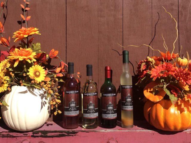 vignoble assortiment de vin du vignoble avec décoration aux couleurs d'automne amherst farm winery amherst massachusetts états unis ulocal produits locaux achat local produits du terroir locavore touriste