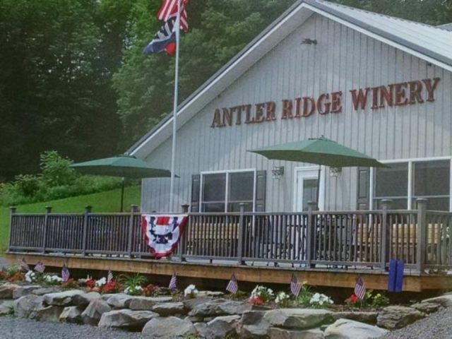vineyards outside building with terrace in front antler ridge winery ulster pennsylvania united states ulocal local products local purchase local produce locavore tourist