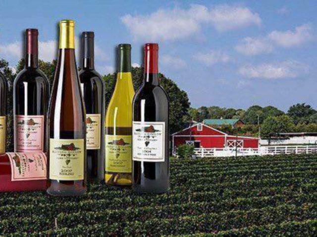 vignoble magnifique domaine avec ses vignes et écurie rouge pour les chevaux avec assortiment de bouteilles de vin du vignoble baiting hollow farm vineyard calverton new york états unis ulocal produits locaux achat local produits du terroir locavore touriste