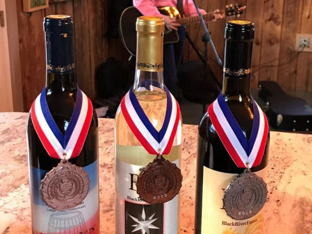 vineyards 3 award-winning wine bottles from the vineyard with musician playing guitar in the background black river farms bethlehem pennsylvania united states ulocal local products local purchase local produce locavore tourist