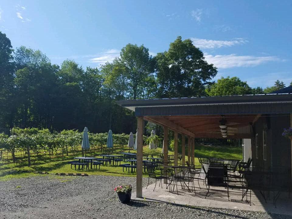 vignoble belle terrasse couverte et tables de pique-nique avec parasol sur le terrain près des vignes blue lizard vineyard and winery andreas pennsylvanie états unis ulocal produits locaux achat local produits du terroir locavore touriste