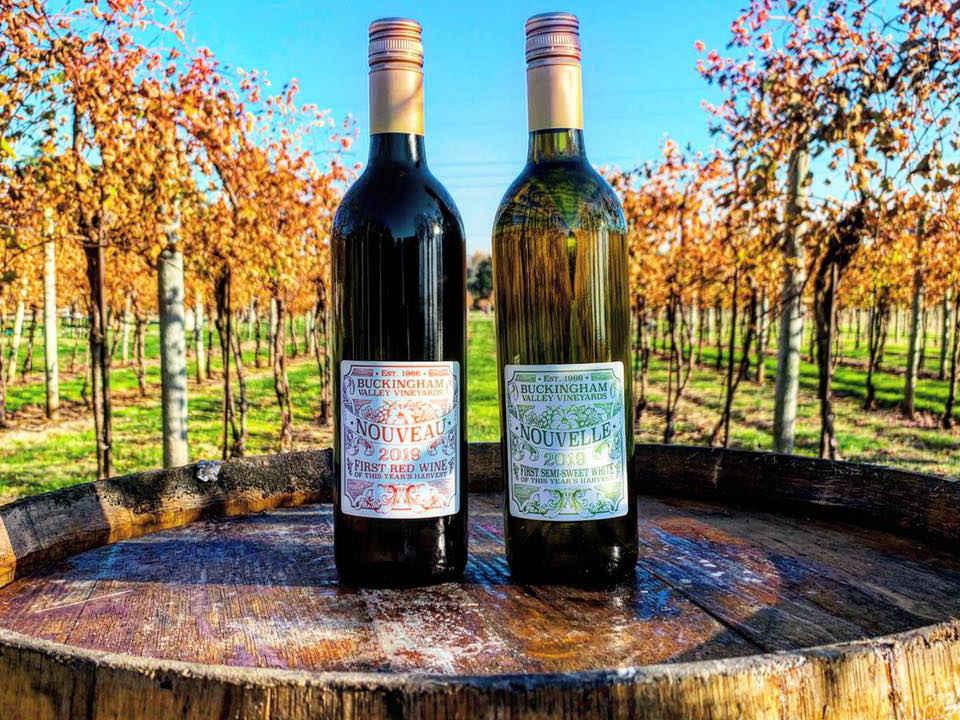 vignoble 2 bouteilles de vin sur un tonneau de bois dans le vignoble en automne buckingham valley vineyards buckingham pennsylvanie états unis ulocal produits locaux achat local produits du terroir locavore touriste