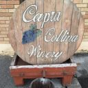 vineyards logo capra collina winery scranton pennsylvania united states ulocal local products local purchase local produce locavore tourist
