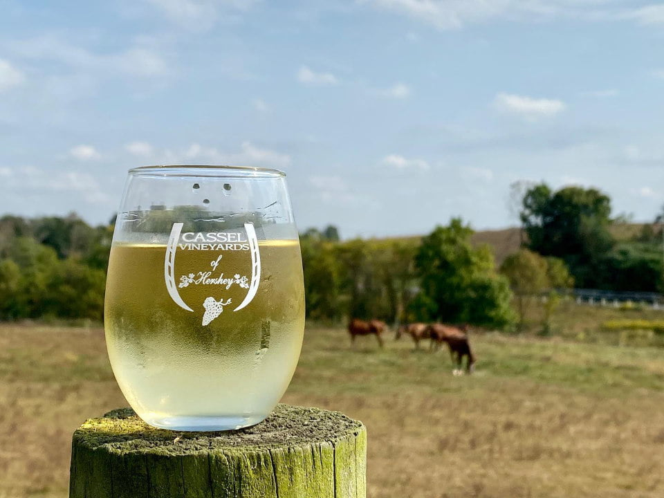 vineyards glass of white wine on a fence post with horses on the field cassel vineyards of hershey hummelstown pennsylvania united states ulocal local products local purchase local produce locavore tourist