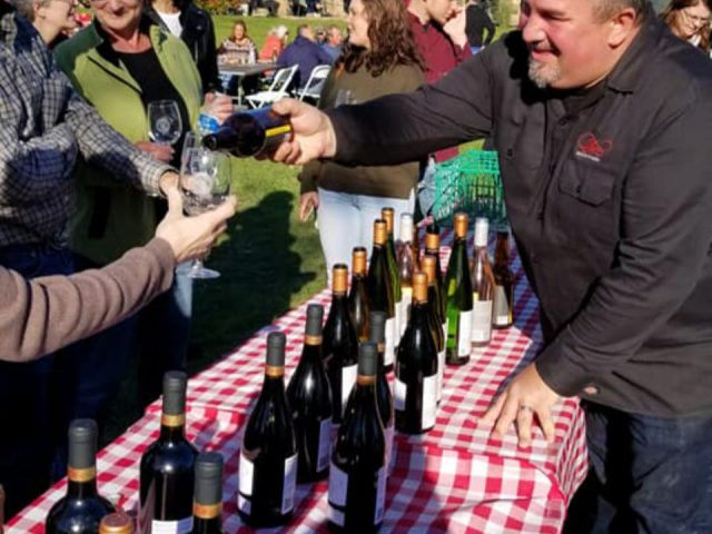 vineyards outdoor tastings of several varieties of wine bottles from the vineyard with many customers on the site on a sunny day colloca estate winery sterling new york united states ulocal local products local purchase local produce locavore tourist
