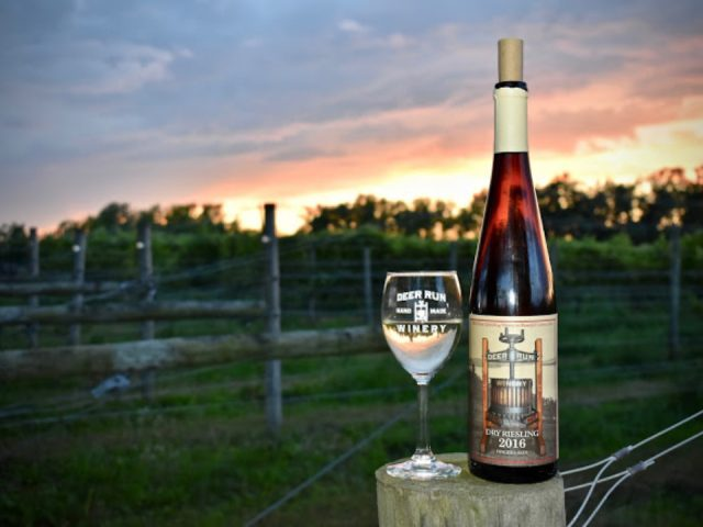 vineyards bottle and glass of white wine on a log with the vines in the background deer run winery geneseo new york united states ulocal local products local purchase local produce locavore tourist