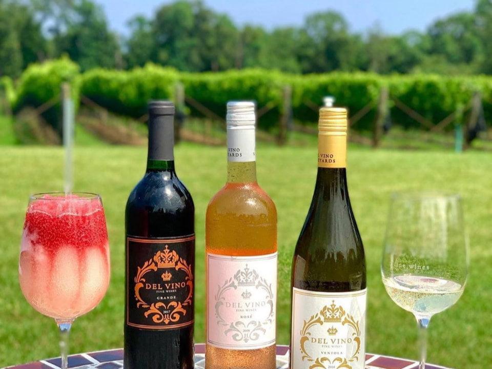 vignoble assortiments de bouteilles et de verres de vin avec vue sur les vignes del vino vineyards northport new york états unis ulocal produits locaux achat local produits du terroir locavore touriste