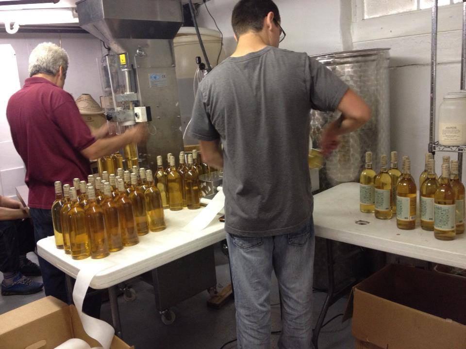 vignoble 2 hommes dans la salle de production du vin avec bouteilles de vin blanc et réservoirs en acier inoxydable kog hill winery morgantown pennsylvanie états unis ulocal produits locaux achat local produits du terroir locavore touriste