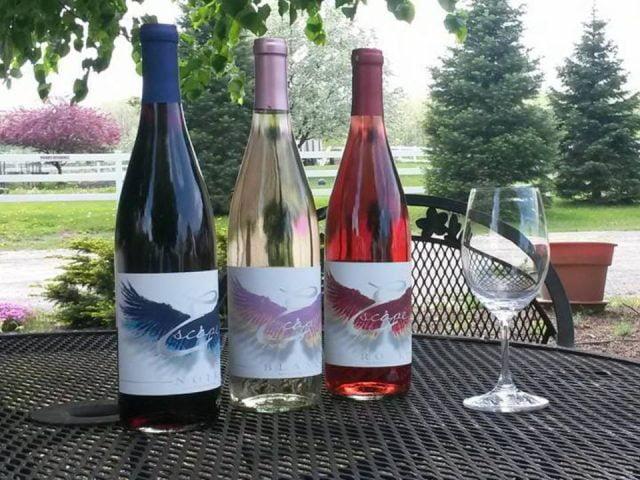 vignoble 3 bouteilles de vin du vignoble sur une table sur la terasse leonard oakes estate winery medina new york états unis ulocal produits locaux achat local produits du terroir locavore touriste