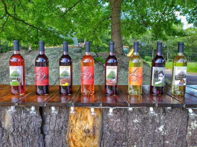 vineyards assortment of wine bottles from the vineyard on an outdoor table in a natural setting leyden farm vineyard and winery west greenwich rhode island united states ulocal local products local purchase local produce locavore tourist