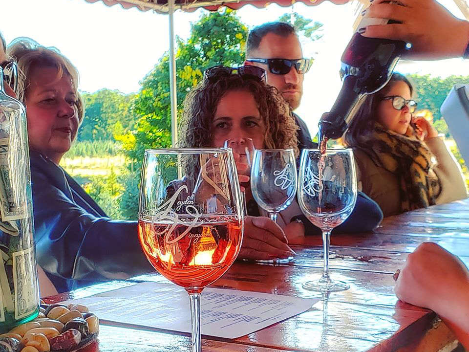 vineyards people at the bar enjoying glasses of wine leyden farm vineyard and winery west greenwich rhode island united states ulocal local products local purchase local produce locavore tourist