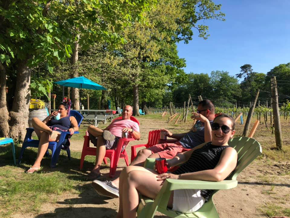 vineyards group of people sitting on colorful chairs with the vines around them loughlin vineyard sayville new york united states ulocal local products local purchase local produce locavore tourist
