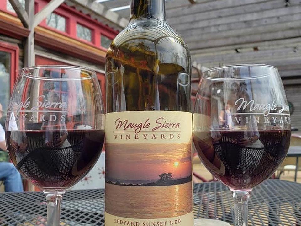 vignoble bouteille et 2 verres de vin rouge maugle sierra vineyards ledyard connecticut états unis ulocal produits locaux achat local produits du terroir locavore touriste