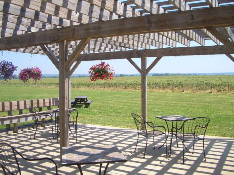 vineyards patio with tables and chairs in the midst of luscious grape vineyards penn shore winery and vineyards north east pennsylvania united states ulocal local products local purchase local produce locavore tourist