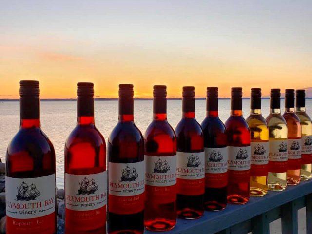 vignoble assortiment de bouteilles de vin du vignoble avec vue de baie de Cape Cod plymouth bay winery plymouth massachusetts états unis ulocal produits locaux achat local produits du terroir locavore touriste
