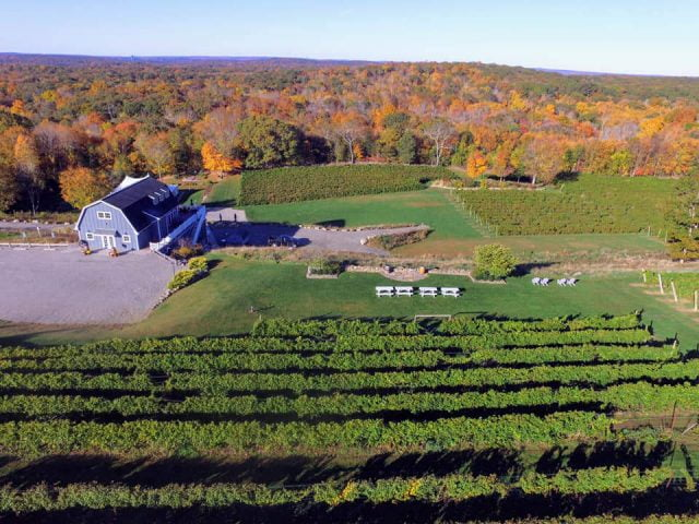 vineyards aerial view of the estate with its buildings and vineyard preston ridge vineyard preston connecticut united states ulocal local products local purchase local produce locavore tourist