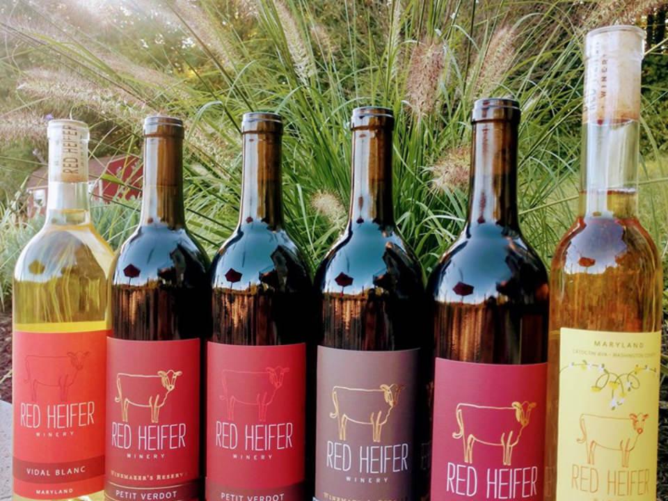 vignoble assortiment de bouteilles de vin du vignoble red heifer winery smithsburg maryland états unis ulocal produits locaux achat local produits du terroir locavore touriste