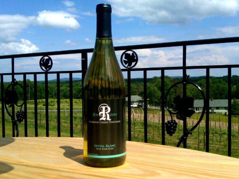 vignoble bouteille de vin rouge sur une table de la terrasse avec vue sur les vignes robibero winery new paltz new york états unis ulocal produits locaux achat local produits du terroir locavore touriste