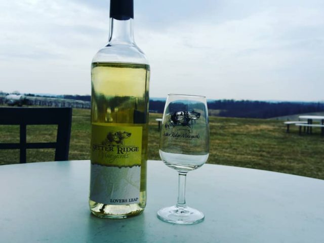 vineyards bottle and glass of white wine on a table outside in front of the estate setter ridge vineyards kutztown pennsylvania united states ulocal local products local purchase local produce locavore tourist