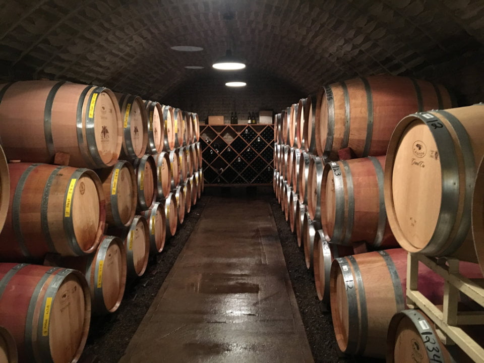 vineyards wine cellar filled with wooden barrels seven mountains wine cellars spring mills pennsylvania united states ulocal local products local purchase local produce locavore tourist