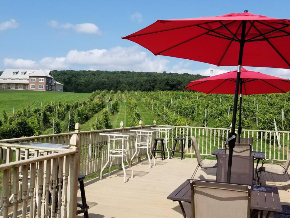 vineyards beautiful terrace overlooking the vineyards in summer spyglass ridge winery sunbury pennsylvania united states ulocal local products local purchase local produce locavore tourist
