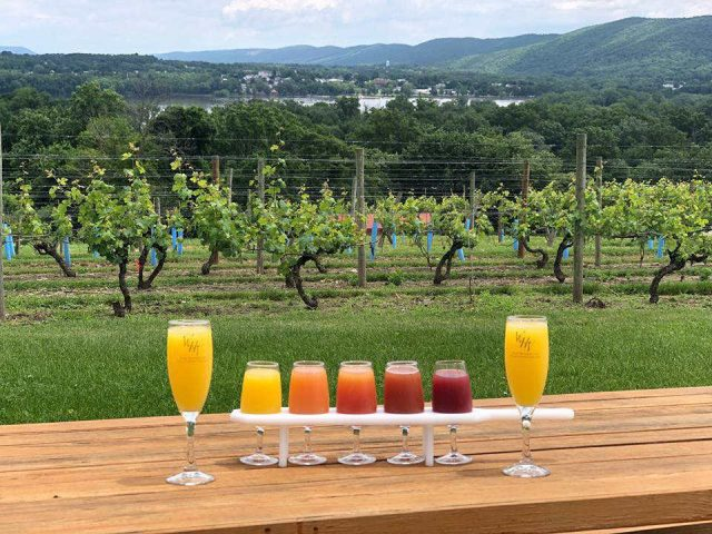 vineyards various mimosa drinks on a wooden tray in front of the vines the winery at wilcox wilcox pennsylvania united states ulocal local products local purchase local produce locavore tourist