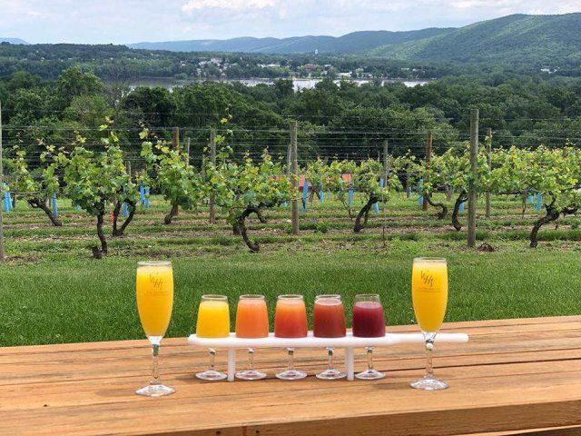 vignoble verres de mimosa variés sur un plateau de bois devant les vignes the winery at wilcox wilcox pennsylvanie états unis ulocal produits locaux achat local produits du terroir locavore touriste