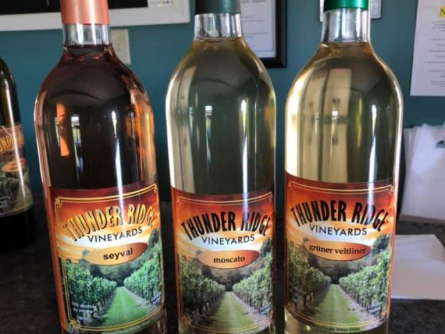 vineyards assortment of 3 bottles of wine from the vineyard thunder ridge vineyards spring grove pennsylvania united states ulocal local products local purchase local produce locavore tourist