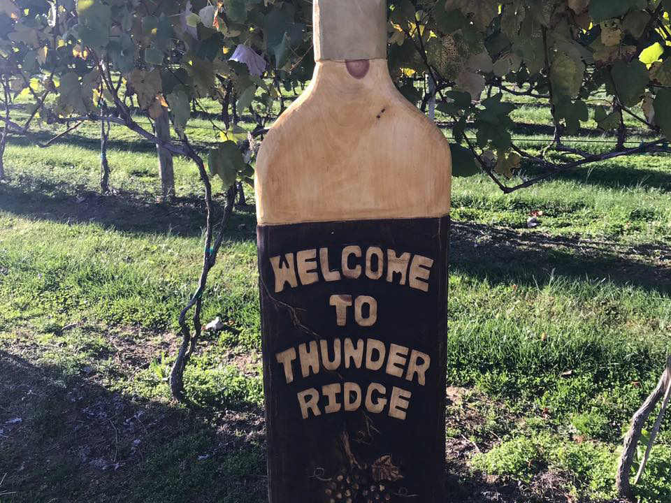 vineyards bottle with welcome message in the vineyards thunder ridge vineyards spring grove pennsylvania united states ulocal local products local purchase local produce locavore tourist