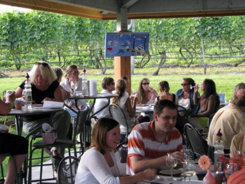 vignoble terrasse remplie de clients assis aux tables avec vue sur les vignes en été truro vineyards north truro massachusetts états unis ulocal produits locaux achat local produits du terroir locavore touriste
