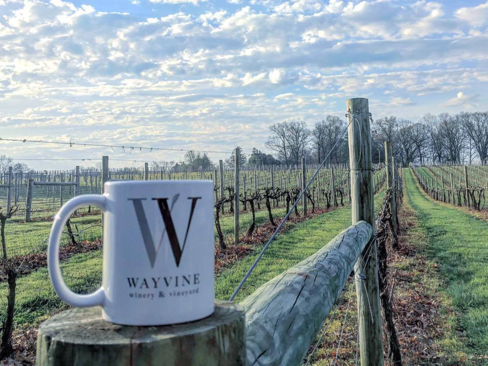 vignoble tasse de café avec logo du vignoble sur un poteau de cloture dans le vignoble wayvine winery and vineyard nottingham pennsylvanie états unis ulocal produits locaux achat local produits du terroir locavore touriste