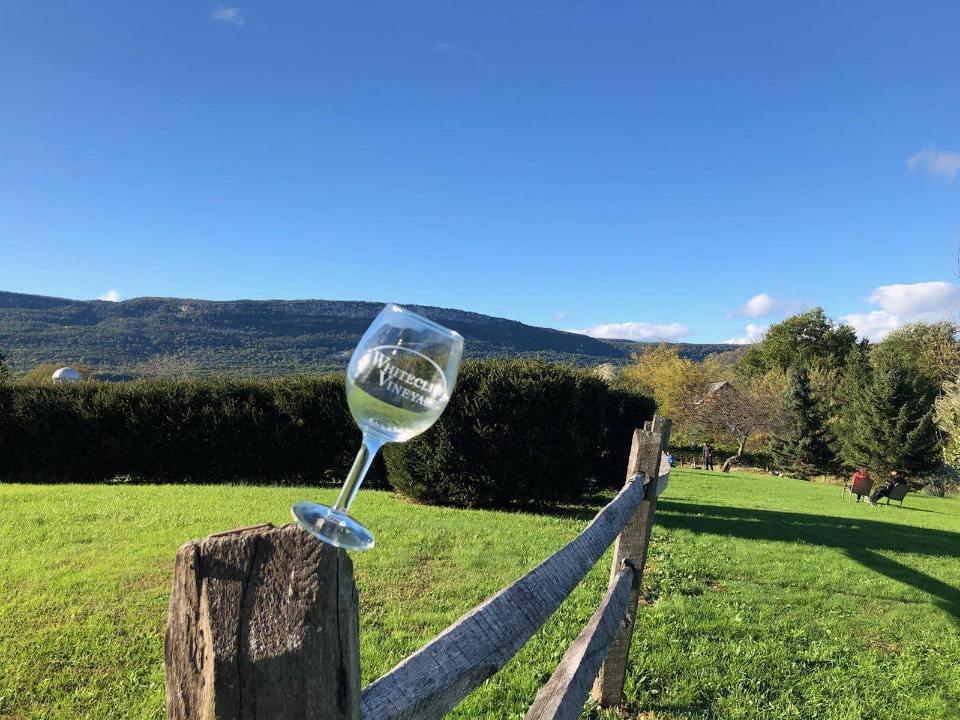vignoble verre de vin sur la cloture avec vue du domaine whitecliff vineyard and winery gardiner new york états unis ulocal produits locaux achat local produits du terroir locavore touriste
