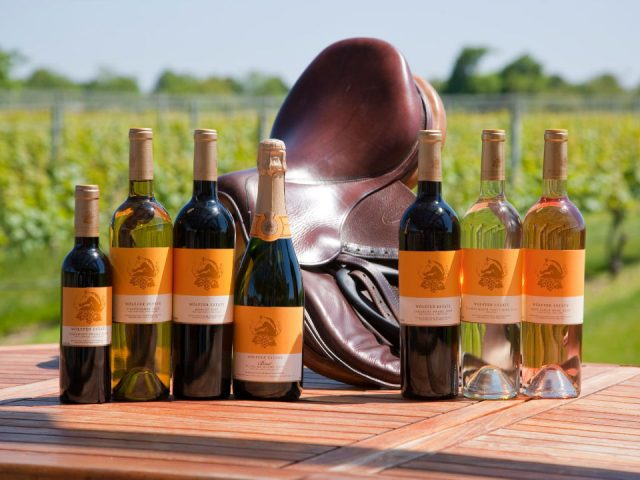 vineyards assortment of wine bottles with a saddle on the terrace table and vineyard in the background wolffer estate vineyard sagaponack new york united states ulocal local products local purchase local produce locavore tourist