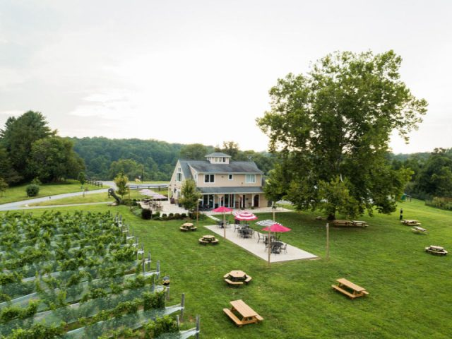 vineyards aerial view of the estate with winery terrace and picnic tables on the ground and vineyards 50 west vineyards middleburg virginia united states ulocal local products local purchase local produce locavore tourist