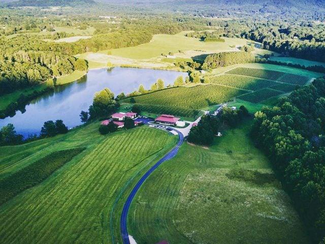vignoble grand domaine avec vignes et établissement vinicole et un lac afton mountain vineyards afton virginie états unis ulocal produits locaux achat local produits du terroir locavore touriste