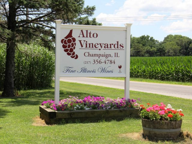 vineyards outdoor sign of the winery in summer alto vineyards champaign illinois united states ulocal local products local purchase local produce locavore tourist