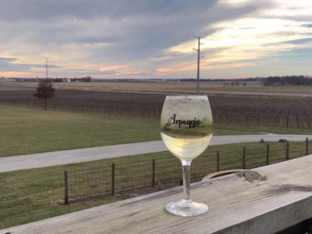 vineyards glass of white wine on the edge of the terrace with vineyard view cloudy day arpeggio winery pana illinois united states ulocal local products local purchase local produce locavore tourist