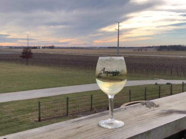 vignoble verre de vin blanc sur le bord de la terrasse avec vue du vignoble journée nuageuse arpeggio winery pana illinois états unis ulocal produits locaux achat local produits du terroir locavore touriste