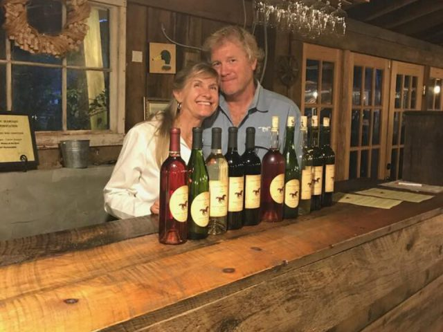 vineyards owner couple behind the tasting bar with assorted bottles of vineyard wine for tastings aspen dale winery at the barn delaplane virginia united states ulocal local products local purchase local produce locavore tourist