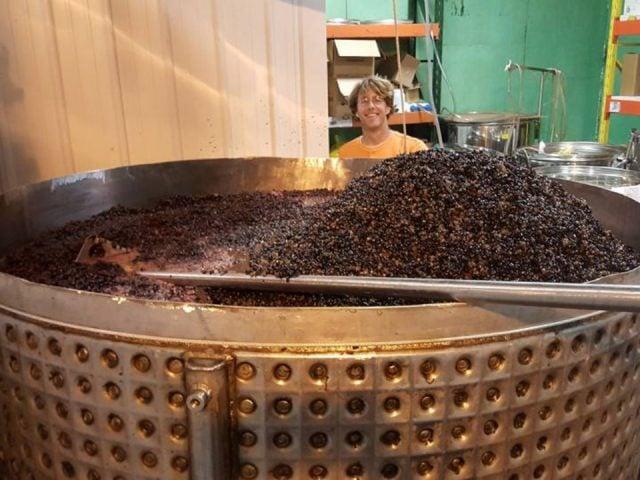 vignoble immense cuve de raisins pour le pressage avec personnel berryville vineyards claremont illinois états unis ulocal produits locaux achat local produits du terroir locavore touriste