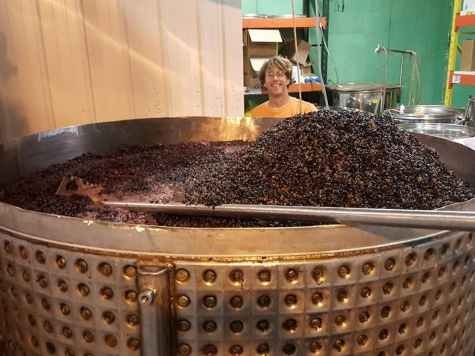 vineyards huge vat of grapes for pressing with staff berryville vineyards claremont illinois united states ulocal local products local purchase local produce locavore tourist