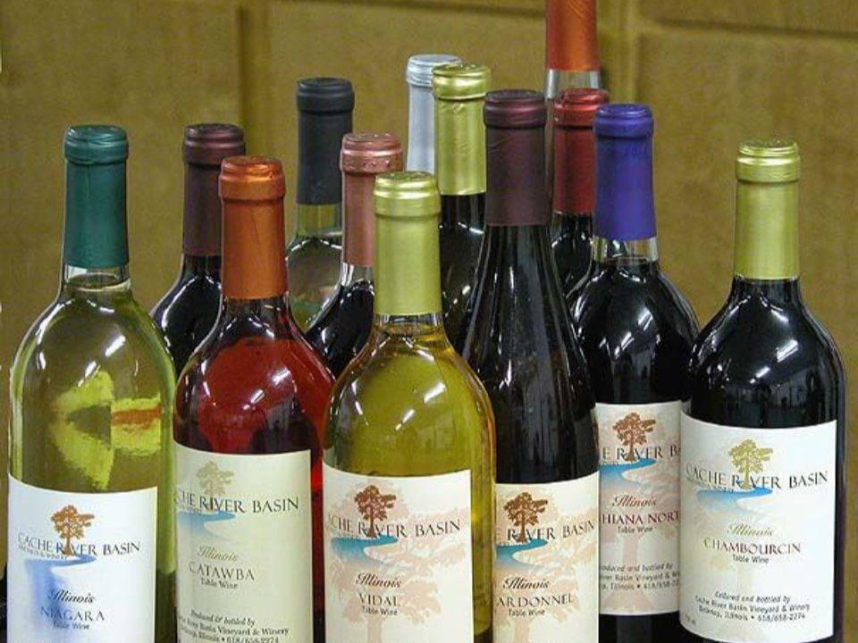 vignoble assortiment de bouteilles de vin du vignoble cache river basin vineyard and winery belknap illinois états unis ulocal produits locaux achat local produits du terroir locavore touriste