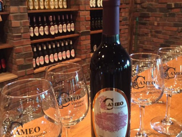 vignoble bouteille de vin rouge avec 4 verres sur le bar de dégustation et bouteilles de vin du vignoble sur les tablettes dans les arches en briques cameo vineyards greenup illinois états unis ulocal produits locaux achat local produits du terroir locavore touriste