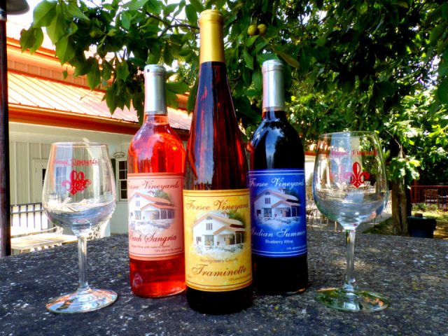 vineyards 3 bottles and 2 glasses on a table outside under a fruit tree forsee vineyards and winery coffeen illinois united states ulocal local products local purchase local produce locavore tourist