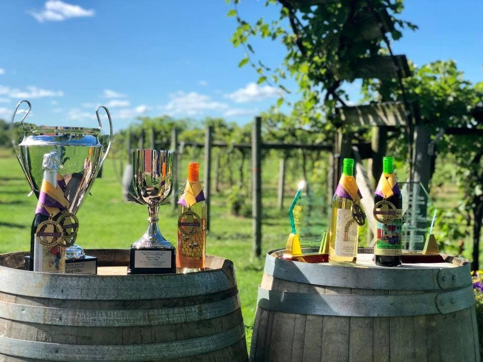 vignoble assortiment de bouteilles de vin primées du vignoble sur 2 tonneaux dans les vignes en été galena cellars vineyard galena illinois états unis ulocal produits locaux achat local produits du terroir locavore touriste