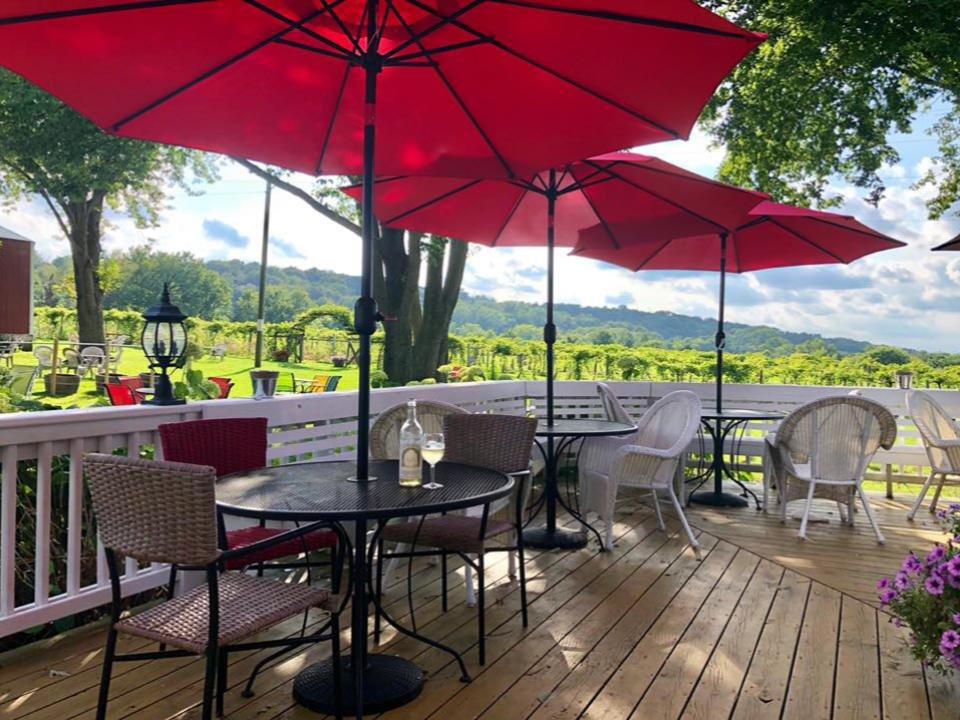 vignoble terrasse avec bouteille et verre de vin blanc sur une table avec parasol rouge et magnifique vue sur les vignes galena cellars vineyard galena illinois états unis ulocal produits locaux achat local produits du terroir locavore touriste