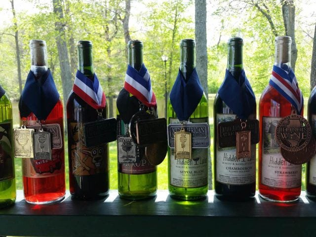 vineyards assortment of award winning wine bottles from the vineyard with vines in the background hidden lake winery aviston illinois united states ulocal local products local purchase local produce locavore tourist