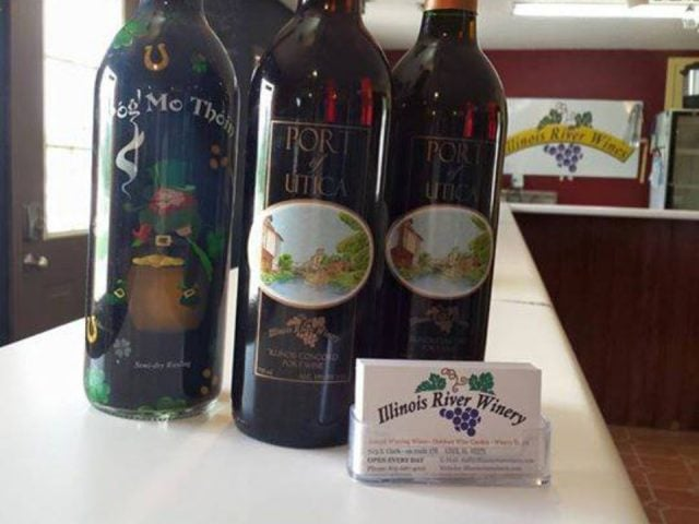 vineyards 3 bottles from the vineyard at the tasting bar illinois river winery north utica illinois united states ulocal local products local purchase local produce locavore tourist